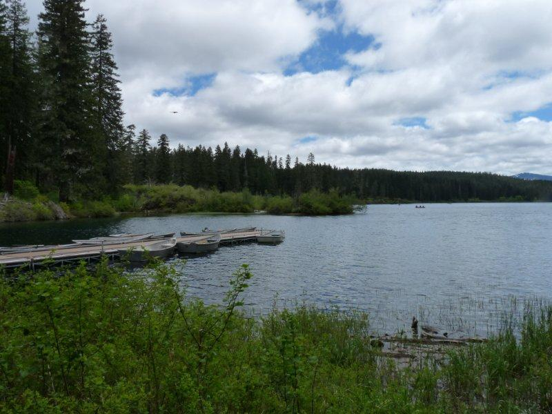 Detroit and clear lake oregon sally a desouza for Clear lake oregon fishing